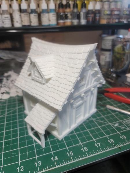 3-D Printed Cottage